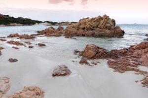 spiaggia rosa sardegna perché il colore della sabbia è rosa